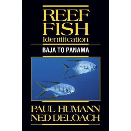 Reef Fish Identification : Baja to Panama