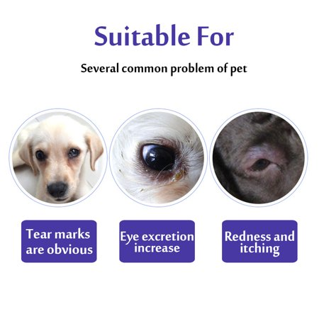 120 Pieces Pet Eye Wet Wipes Dog Cat Tear Stain Remover Pet Eye Grooming Wipes - image 9 of 10