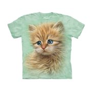 Kitten Portrait Close Up Cat Face Big Boys T-Shirt Tee