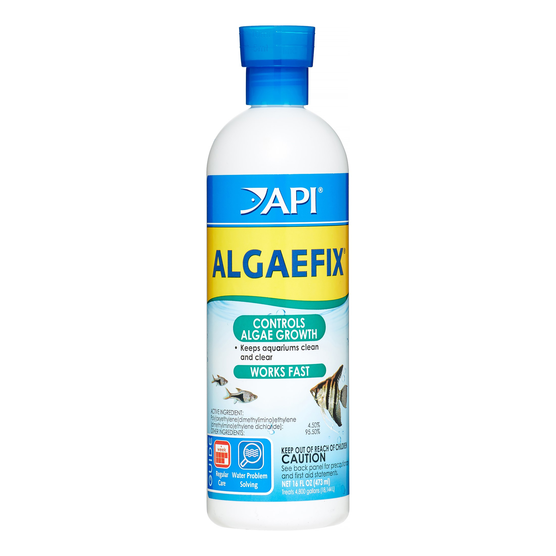 API Algaefix, Algae Control Solution, 16 oz
