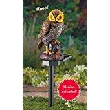 Hooting Brown Owl Solar Garden Stake