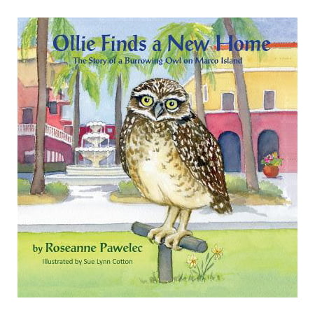 Ollie Finds a New Home, the Story of a Burrowing Owl on Marco Island - Ollie The Ostrich