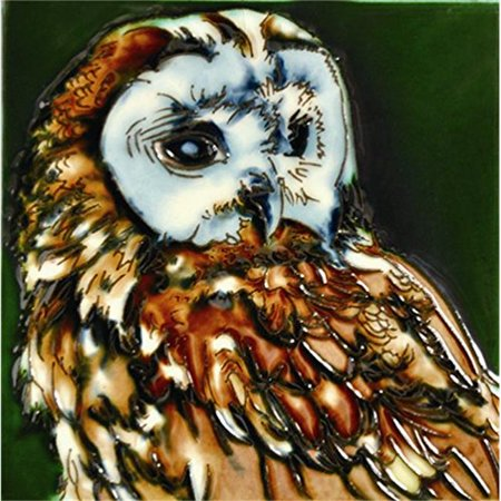 - En Vogue H-28 6 x 6 in. Owl, Decorative Ceramic Art Tile