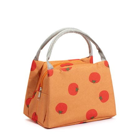 Lunch Picnic Bag Tote Bag Insulation Lunch Snacks Organizer Holder Container Simple