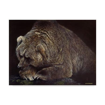 Trademark Fine Art 'Bear In Dark' Canvas Art by Harro
