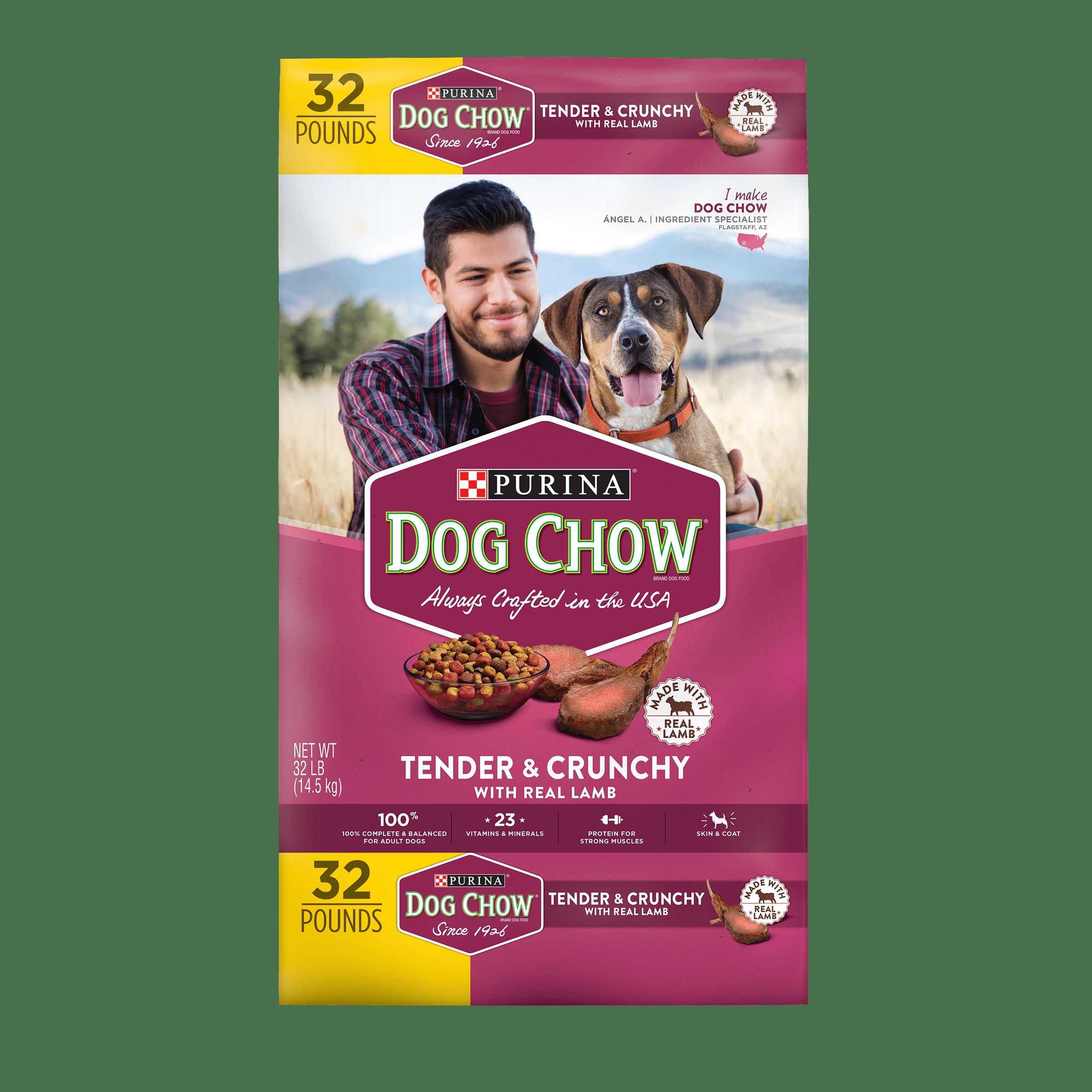 Purina Dog Chow Tender & Crunchy with Real Lamb Adult Dry Dog Food - 32 lb. Bag