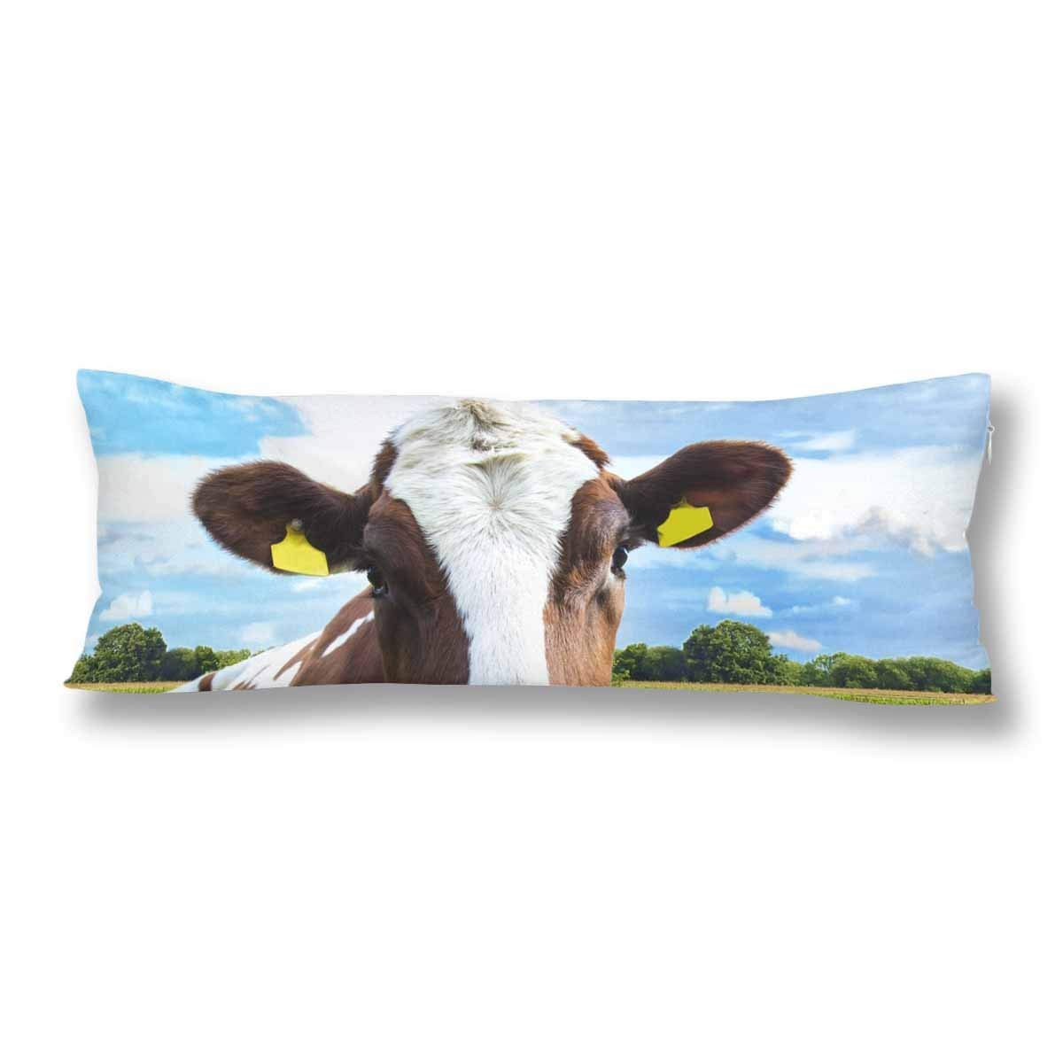 ABPHOTO White Red-Haired Young Cow on Pasture Body Pillow Covers Pillowcase 20x60 inch Blue Sky Body Pillow Case Protector