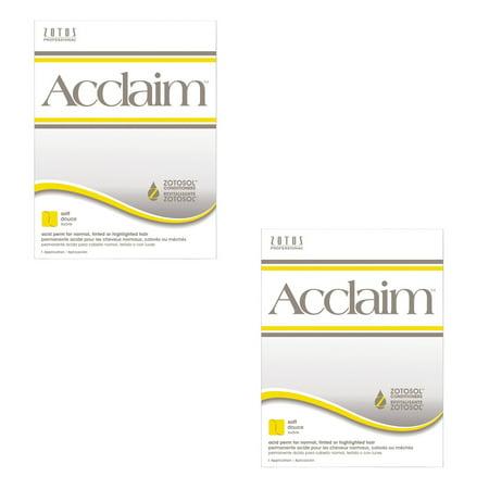 (ZOTOS Beauty Salon Acclaim Acid Soft Perm Normal Tinted Hair HP-40717 (2 Pack))