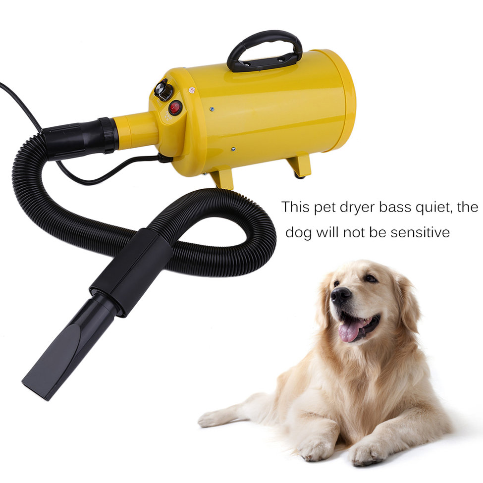 Portable Pet Dryer Pets Bathing Beauty Hair Dryers Dog Cat Pet Grooming Blow Hair Dryer Quick Hairdryer US Plug Yellow
