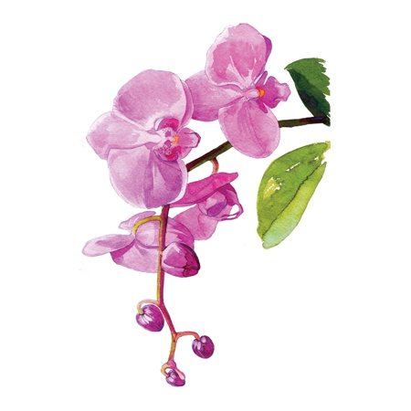 Watercolor Orchids Floral Artwork Wall Decor Signs Small Size, 7.5x10.5 Inch
