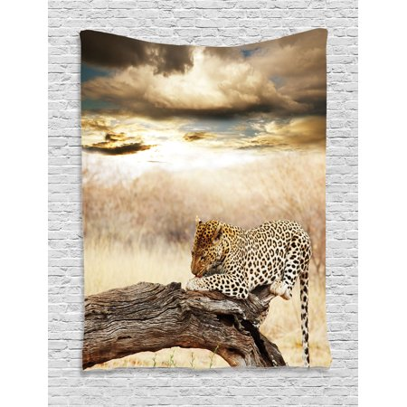 Safari Decor Wall Hanging Tapestry, Leopard Resting Under Dramatic Cloudy Sky Africa Safari Wild Cats Nature Print, Bedroom Living Room Dorm Accessories, By - Leopard Tapestry