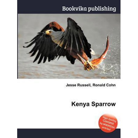 Window Alert Bird - Kenya Sparrow