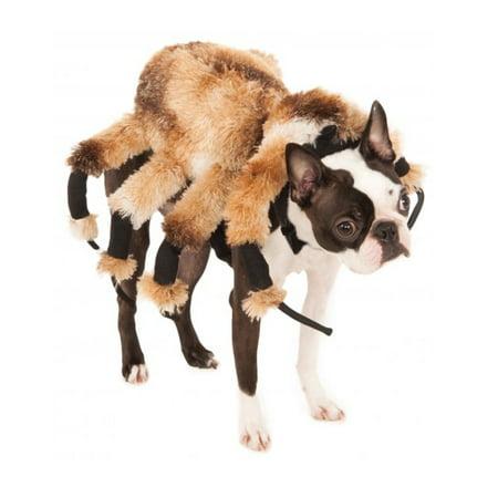 Pet Costume Gian Spider
