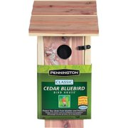 Pennington Cedar Bluebird Wild Bird House, 1 unit