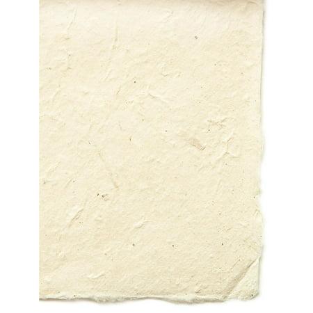 Lokta Paper natural, 20 in. x 30 in., 40 g (pack of