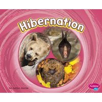 Cycles of Nature: Hibernation (Paperback)