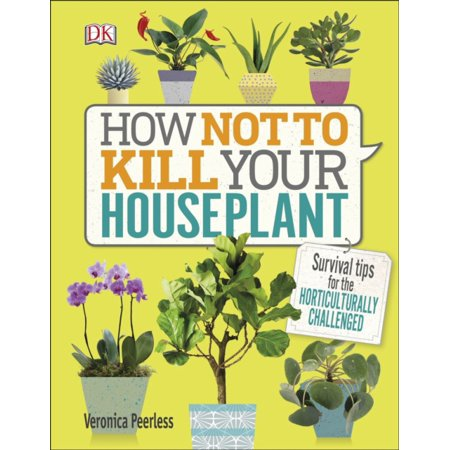 HOW NOT TO KILL YOUR HOUSE PLANT (Best Way To Kill Gnats In House)