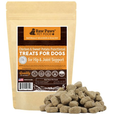 Raw Paws Pet Skin and Coat Supplement for Dogs, 5-ounce/60 Soft Chews - Made in USA - For Shiny Coats & Healthy Itch Free Skin - Omega Skin and Coat Dog Treats
