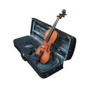 Carlo Robelli VYOUNGMII Young Master Full Size Violin Outfit
