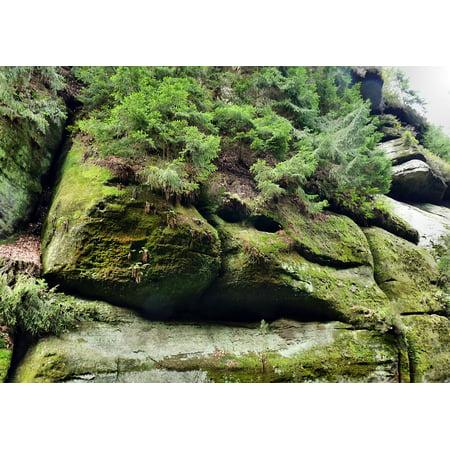 Monkey Rock (LAMINATED POSTER Sand Stone Two Monkeys Bohemian Switzerland Rock Poster Print 24 x 36 )