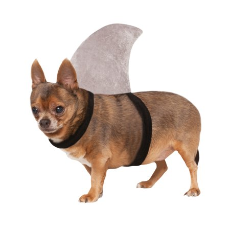 Shark Fin Sharknado Pet Dog Cat Halloween Pool Party Costume - Scary Halloween Costumes For Big Dogs