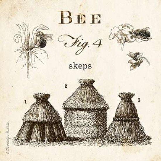 Bee Fig 4 Rolled Canvas Art - Gwendolyn Babbitt (24 x 24)