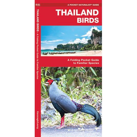 Thailand Birds : A Folding Pocket Guide to Familiar