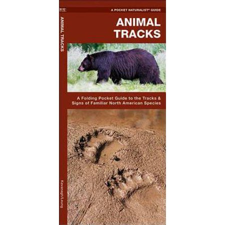 ISBN 9781583550724 product image for North American Nature Guides: Animal Tracks: A Folding Pocket Guide to the Track | upcitemdb.com