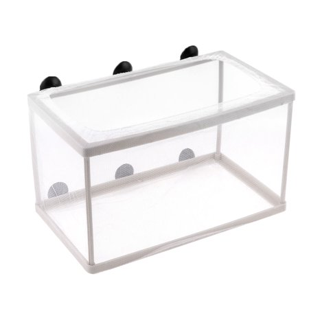 Fish Tank Breeding Breeder /Fry/ Net Box Hatchery w Suction Cup (Fish Tank Fry Holder)