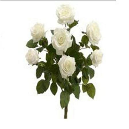 Seed Confetti (FBR054-PE-CR 21.5 in. Peach-Cream Confetti Rose Bush X7- Pack of)