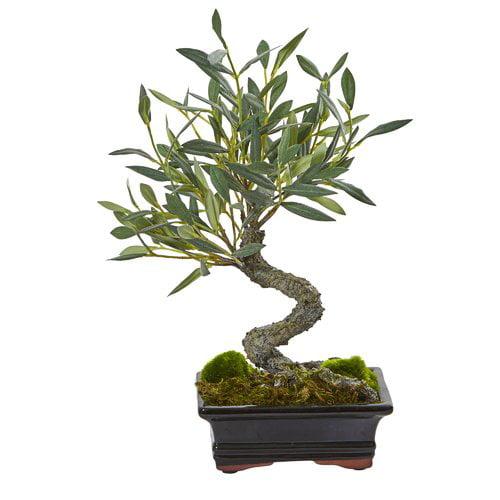 Bloomsbury Market Mini Olive Artificial Desktop Bonsai Plant