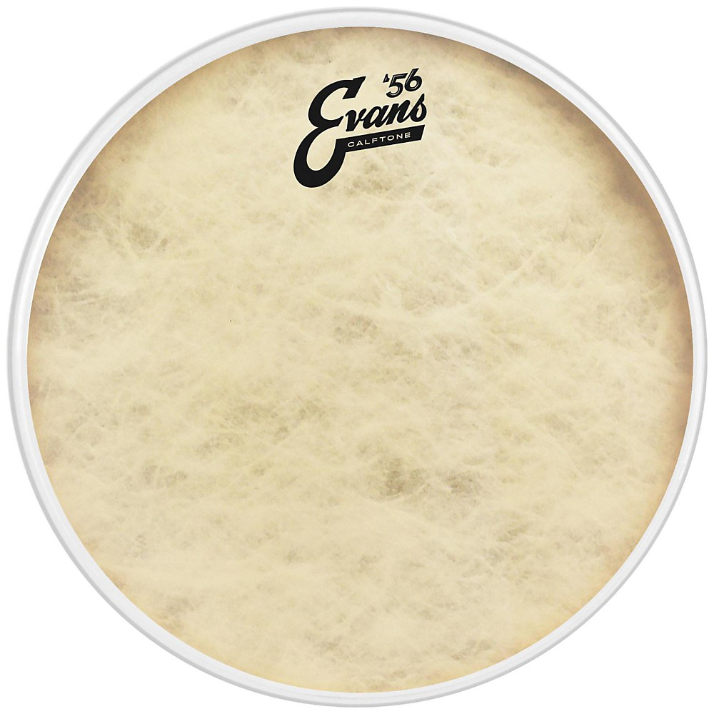 "Evans 18"" '56 Calftone Drum Head by Evans"