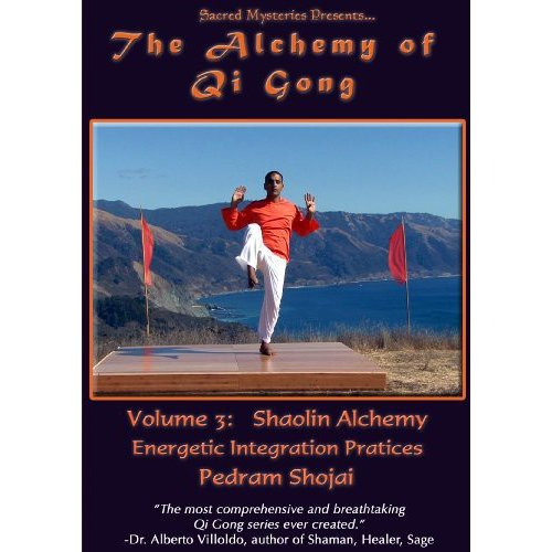 The Alchemy of Qi Gong Volume III <BR>Shaolin Alchemy: Energetic Integration Practices by Victory Multimedia