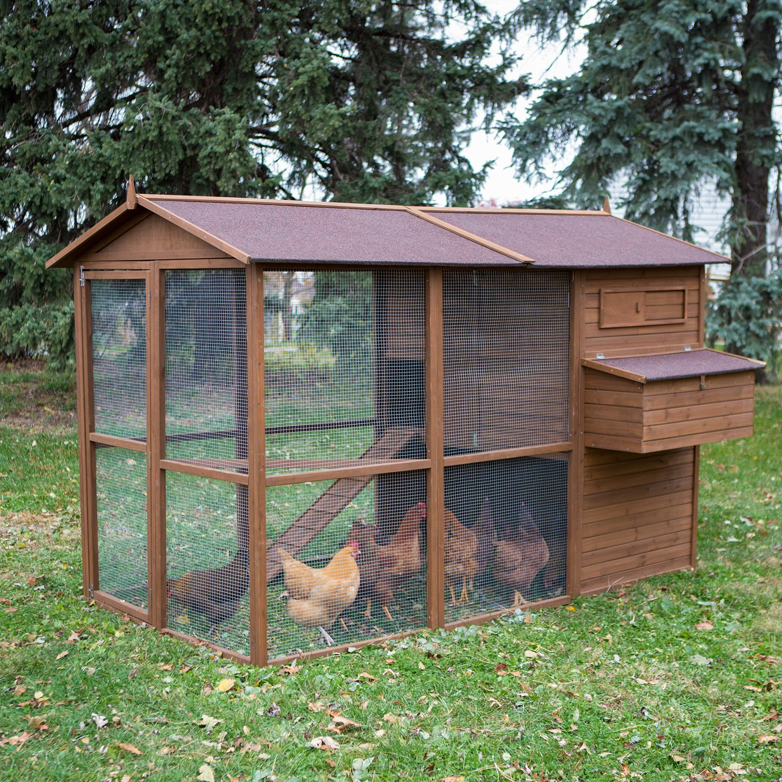 Boomer & George Large Poultry Palace Chicken Coop