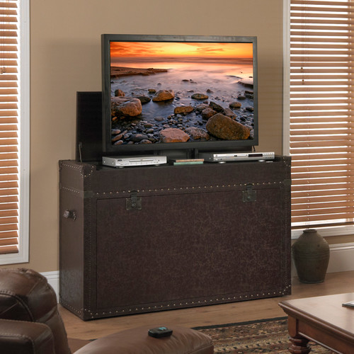 Touchstone Ellis Trunk 54'' TV Stand