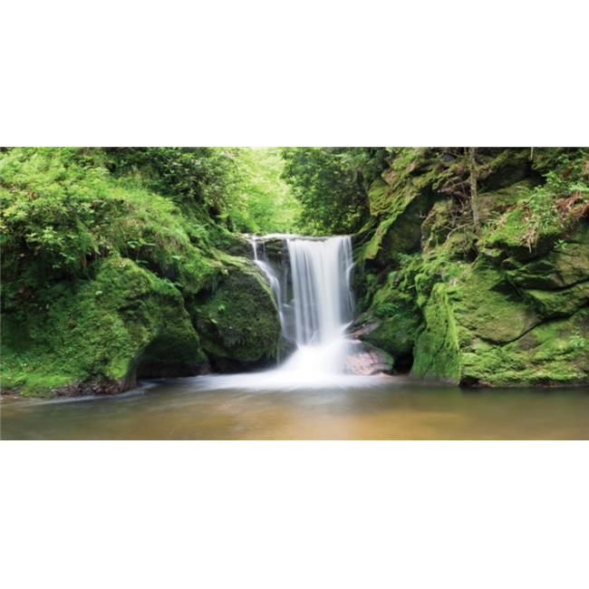 Biggies, Inc. WM-WFL-54 Wall Murals - Waterfall - Medium