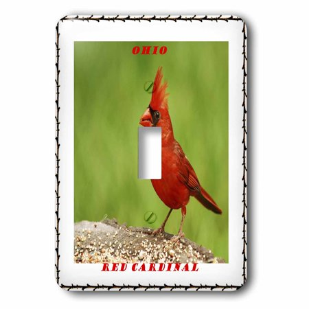 3dRose State Bird Of Ohio Red Cardinal - Single Toggle Switch (lsp_50941_1) (State Toggle)