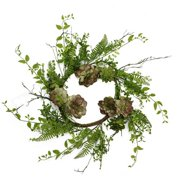 Northlight Seasonal 24'' Artificial Succulent Plant and Mixed Fern Wreath