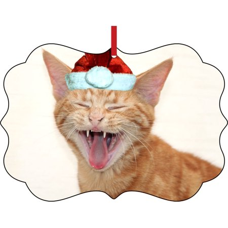 Ornaments Funny Laughing Kitten in a Santa Claus Hat Elegant Semigloss Aluminum Christmas Ornament Tree Decoration - Unique Modern Novelty Tree Décor Favors