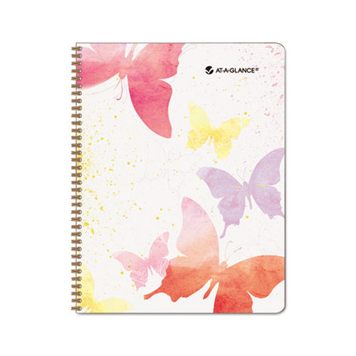 Day Runner Watercolors Recycled Weekly/Monthly Planner 8 1/2 x 11 Inches 2013 (791-905G-13)