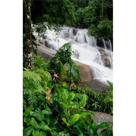 Posterazzi PDDSA04CMI0419 Rainforest Waterfall Serra Da Bocaina Np Parati Brazil Vertical Print by Cindy Miller Hopkins - image 1 de 1