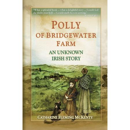 Polly of Bridgewater Farm - eBook