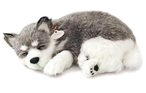 Realistic Breathing Alaskan Husky - Perfect Petzzz Life Like Husky Dog -  Walmart.com - Walmart.com