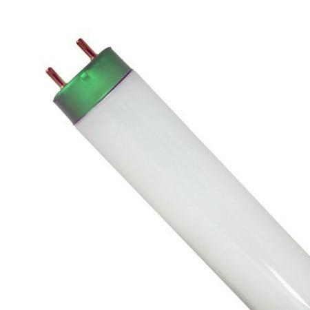"""(Case of 20) F32T8/SP841 Cool White Linear Fluorescent 32-Watt T8 FO32 4100K Light Bulbs 48"""""""