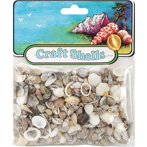 Craft Shells, 50/Pkg, Natural