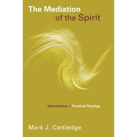 The Mediation of the Spirit : Interventions in Practical Theology