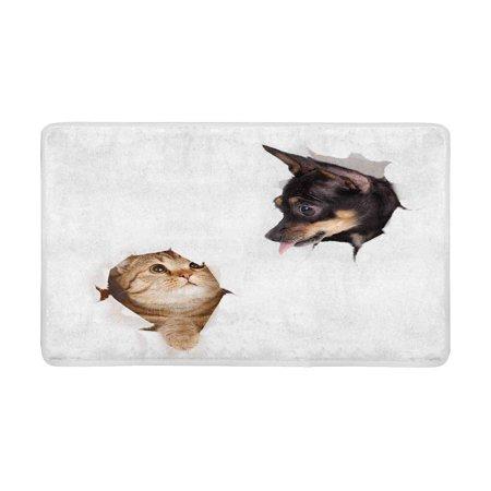 POP Cat and Dog in Paper Side Torn Hole Indoor Entrance Rug Floor Mats Shoe Scraper Doormat 30x18 Inches - image 3 of 3