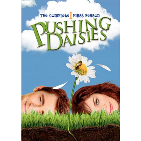 Pushing Daisies: The Complete First Season (DVD) (Pushing Daisies Halloween)