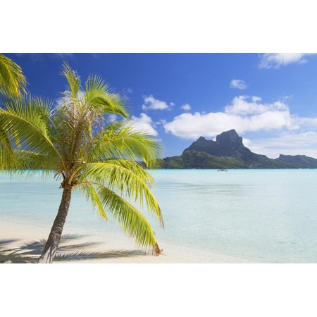 Bora Bora, Society Islands, French Polynesia, South Pacific, Pacific Print Wall Art By Ian