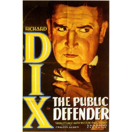 The Public Defender - movie POSTER (Style A) (11